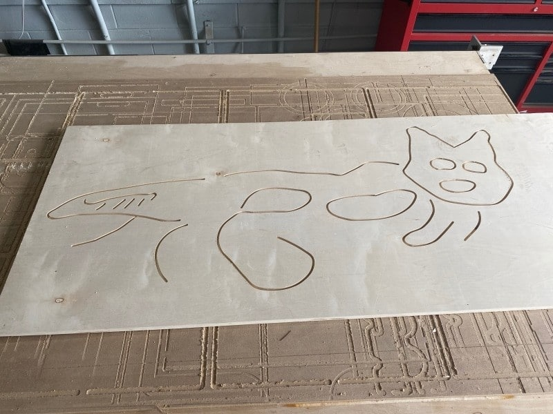 The Nazca Cat